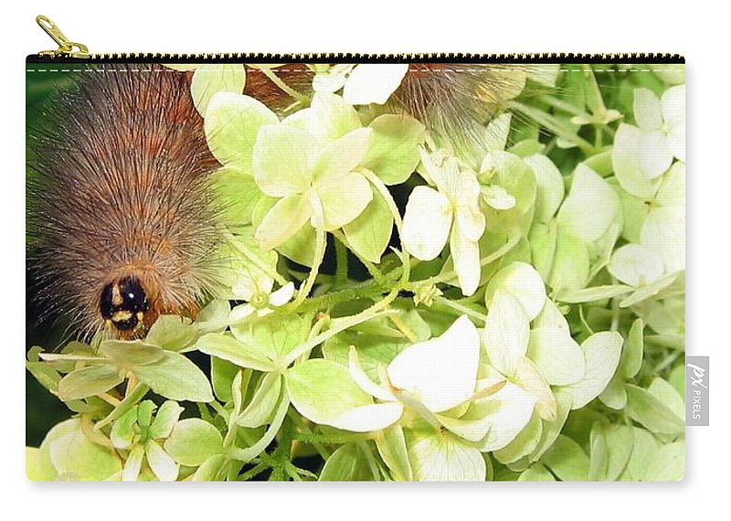 Caterpillar Carry-all Pouch featuring the photograph Caterpillar by Will Borden