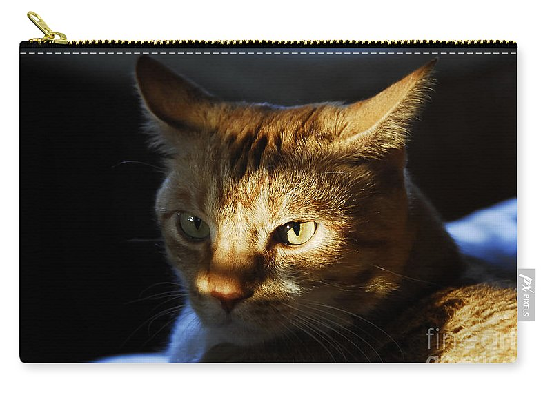 Cat.feline Carry-all Pouch featuring the photograph Catfish by David Lee Thompson