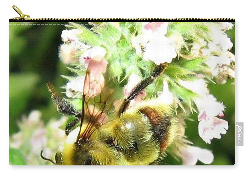 Bee Carry-all Pouch featuring the photograph Catnip And The Bee by Will Borden