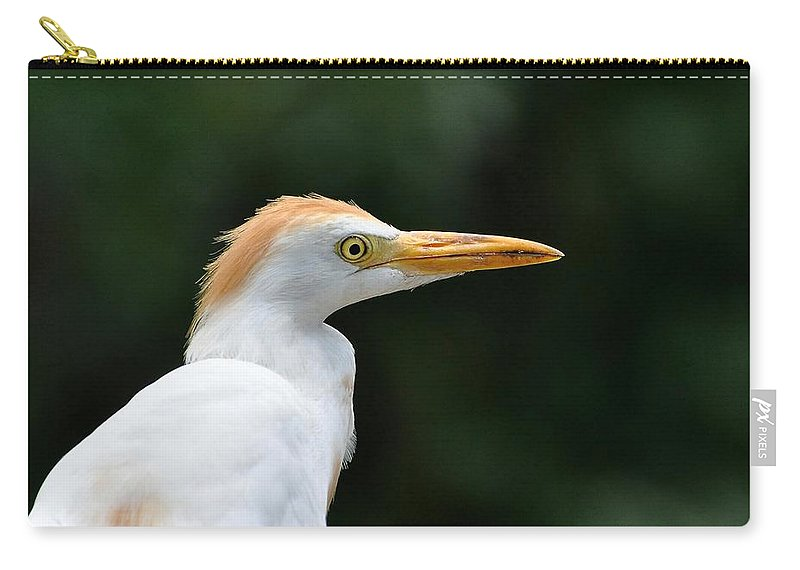 Egret Carry-all Pouch featuring the photograph Cattle Egret Close-up by Al Powell Photography USA