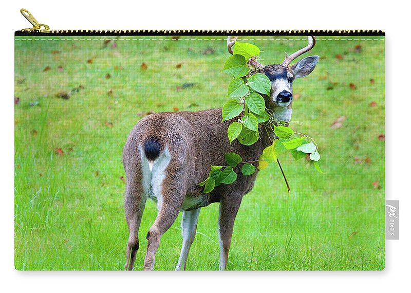 Buck Carry-all Pouch featuring the photograph Caught In The Act by Mike Dawson
