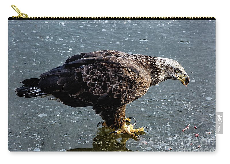 Eagles Carry-all Pouch featuring the photograph Cautious Eagle by Terri Morris