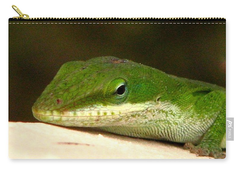 Chameleon Carry-all Pouch featuring the photograph Chameleon 2 by J M Farris Photography