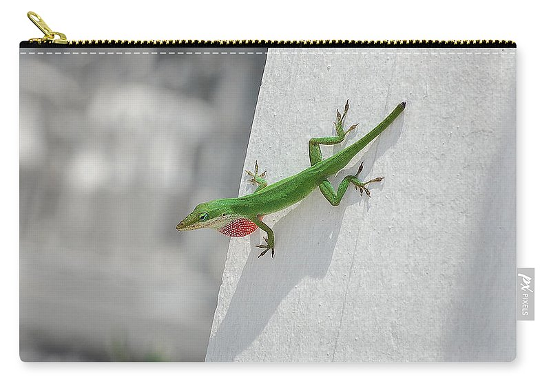 Chameleon Carry-all Pouch featuring the photograph Chameleon by Robert Meanor