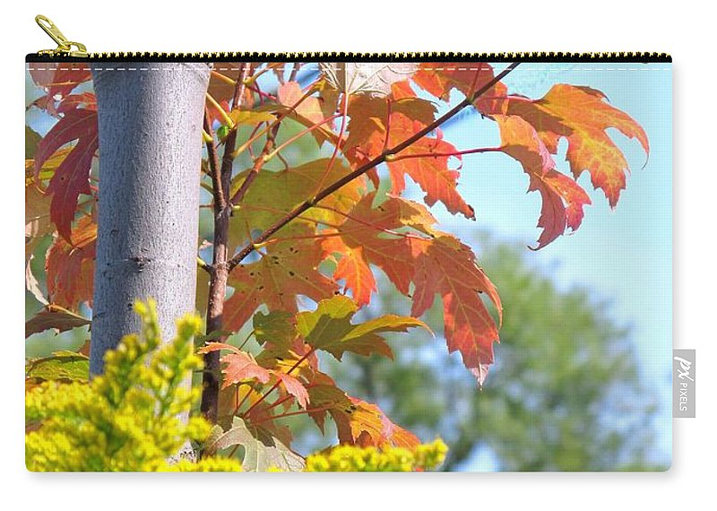 Maple Carry-all Pouch featuring the photograph Changing Leaves by Ian MacDonald