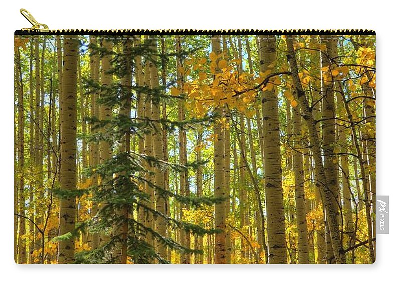 Aspen Carry-all Pouch featuring the photograph Charlie Brown by David Ross
