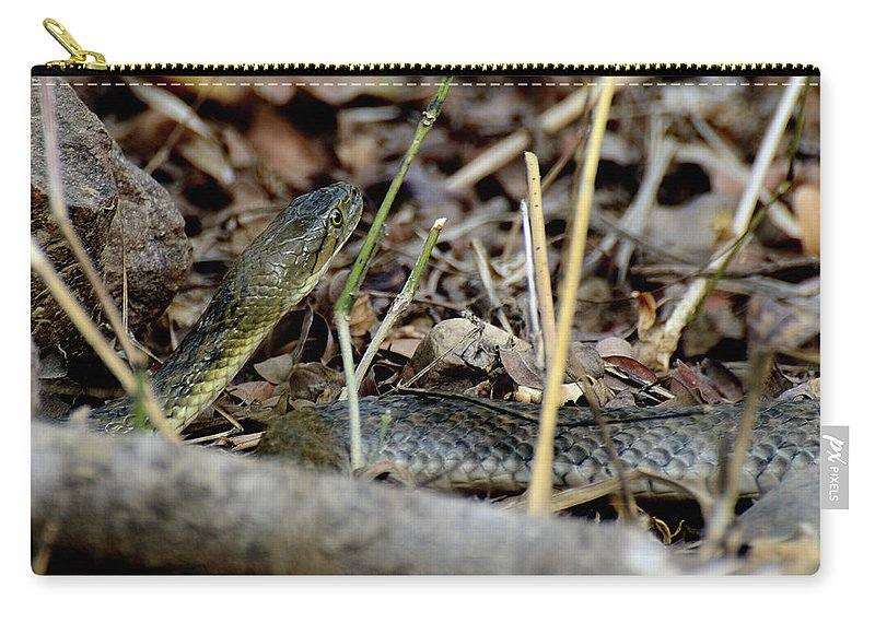 Snake Carry-all Pouch featuring the photograph Checkered Keelblack by Manjot Singh Sachdeva