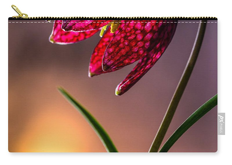 Flowers Carry-all Pouch featuring the photograph Checkered Lily by Joe Mamer