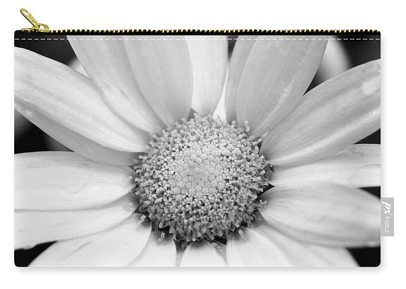 Flower Carry-all Pouch featuring the photograph Cheery Daisy - Black And White by Angela Rath