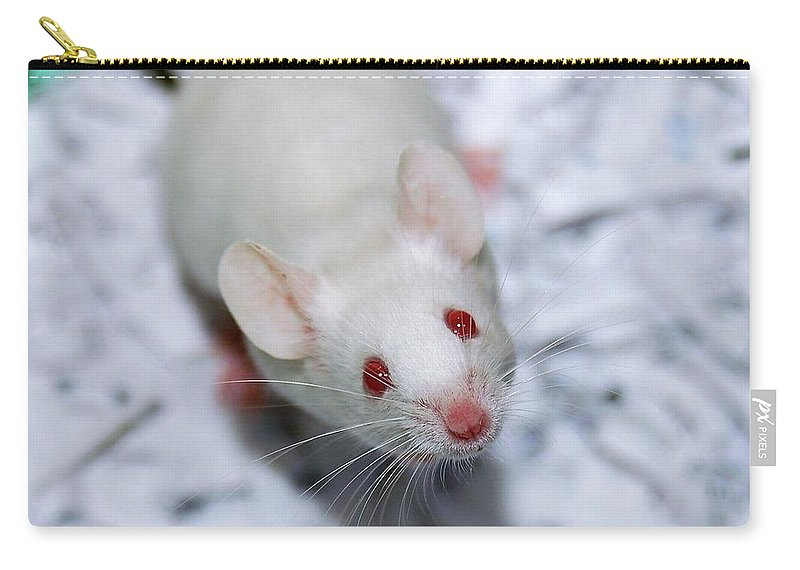 Mouse Carry-all Pouch featuring the photograph Cheese Please by Melissa Haney