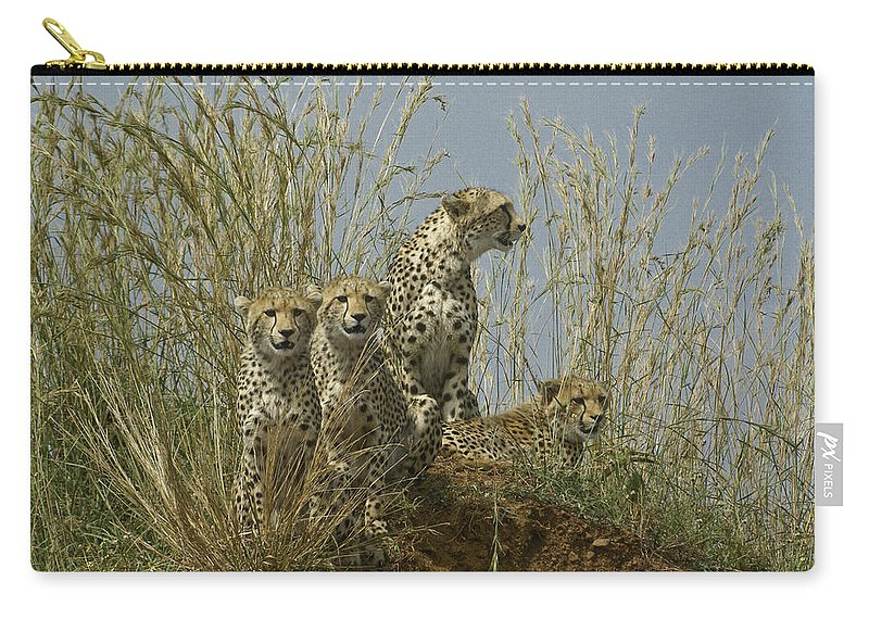 Africa Carry-all Pouch featuring the photograph Cheetah Family by Michele Burgess