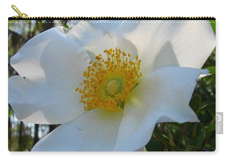 Cherokee Rose Carry-all Pouch featuring the photograph Cherokee Rose 1 by J M Farris Photography