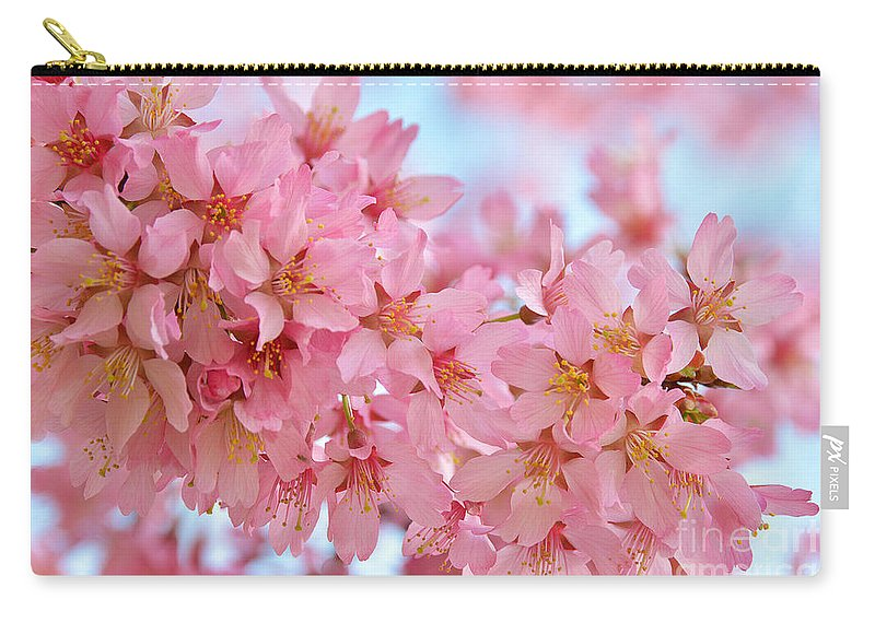 Cherry Blossoms Pink Carry-all Pouch featuring the photograph Cherry Blossom Pastel by Regina Geoghan