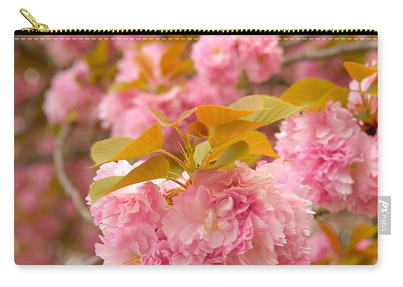 Cherry Carry-all Pouch featuring the photograph Cherry Blossom by Sebastian Musial