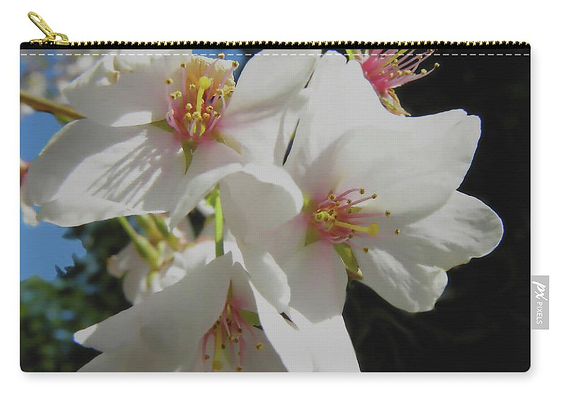 Cherry Blossoms Carry-all Pouch featuring the photograph Cherry Blossoms by Sandi OReilly
