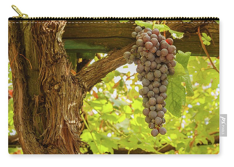Chestnut Wood Poles With A Bunch Of Grapes Carry-all Pouch