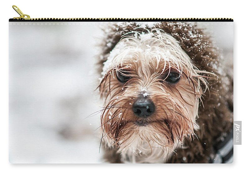 Carry-all Pouch featuring the photograph Chewieyorkierz by Michael Rivera