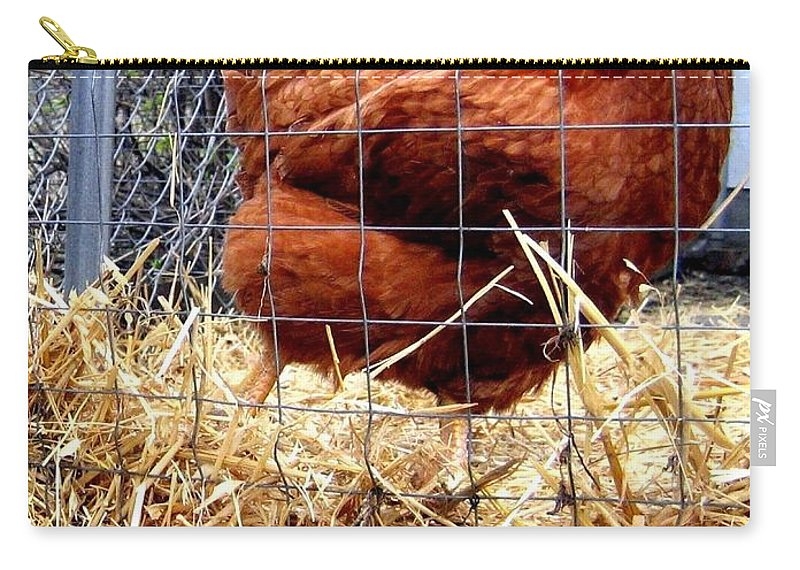 Chicken Carry-all Pouch featuring the photograph Chicken In The Straw by Will Borden