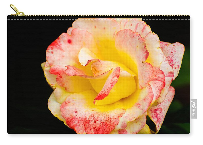 Flowers Carry-all Pouch featuring the photograph Chihuly by James Hennis