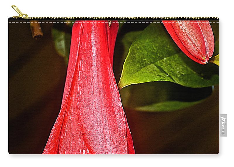 Chile's National Flower Copihue At Auto Museum In Moncopulli Carry-all Pouch featuring the photograph Chile's National Flower Copihue At Auto Museum In Moncopulli-chile by Ruth Hager