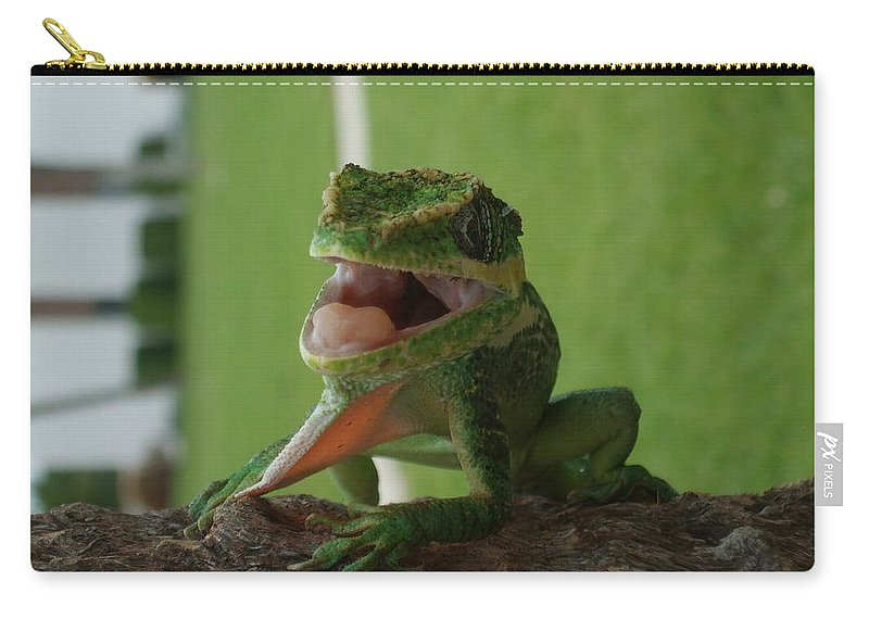 Iguana Carry-all Pouch featuring the photograph Chilling On Wood by Rob Hans