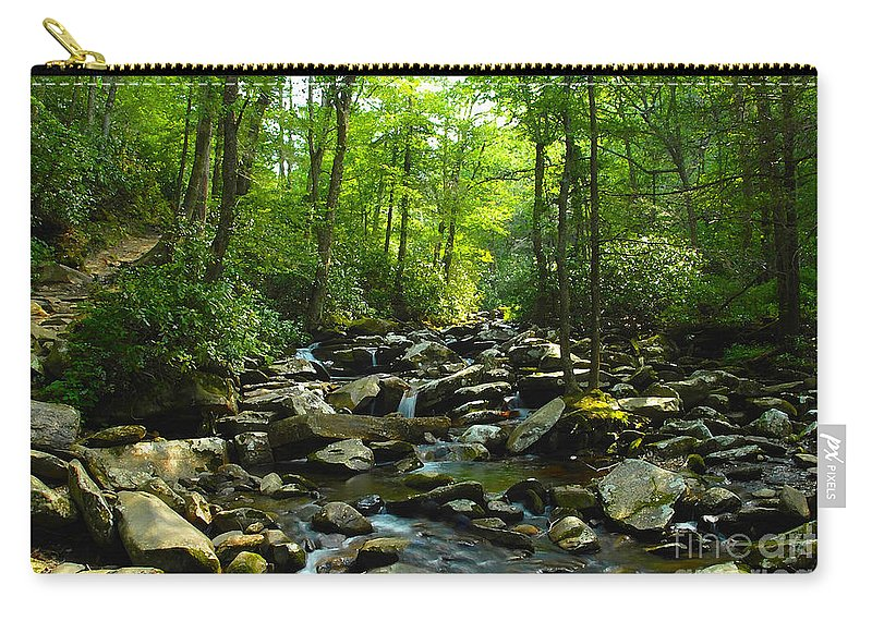 Trail Carry-all Pouch featuring the photograph Chimney Tops Trail by David Lee Thompson
