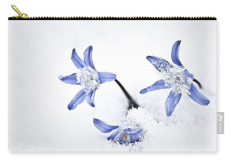 Chionodoxa Carry-all Pouch featuring the photograph Chionodoxa - Glory Of The Snow by Onyonet Photo Studios