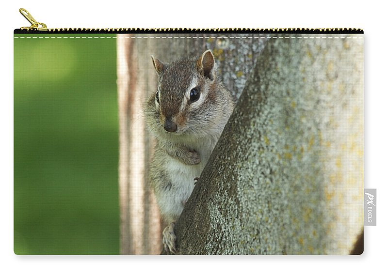 Chipmunk Carry-all Pouch featuring the photograph Chipmunk by Lori Tordsen