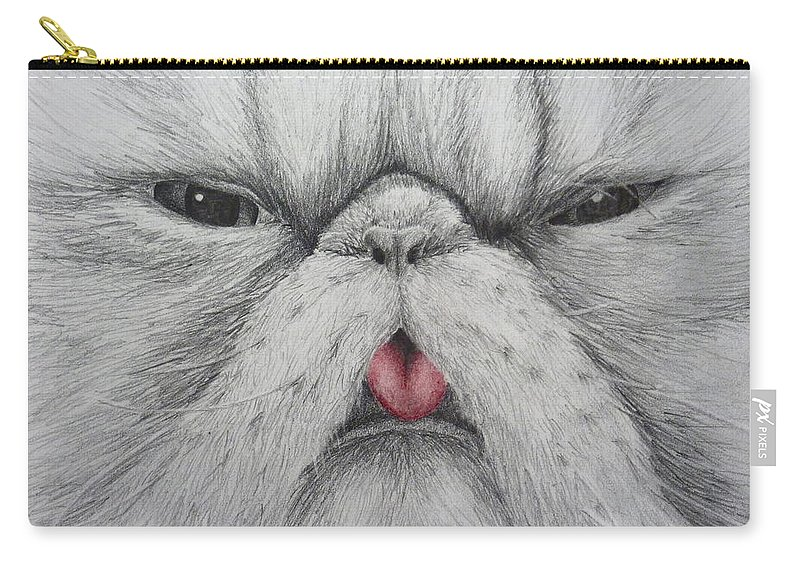 Cats Carry-all Pouch featuring the drawing Christinas Kittycat by Anna Katherine