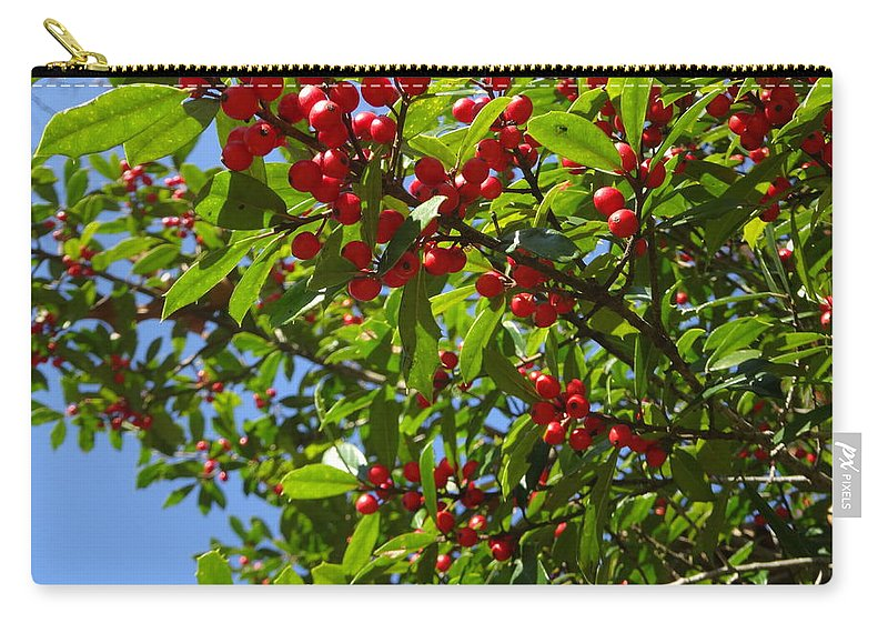 Christmas Carry-all Pouch featuring the photograph Christmas Berries by Beth Deitrick