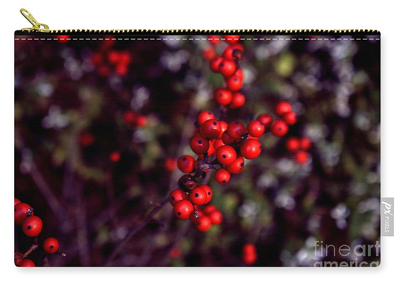 Red Berries Carry-all Pouch featuring the photograph Christmas Berries by Len-Stanley Yesh