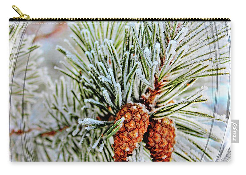 Christmas Carry-all Pouch featuring the photograph Christmas Card 2017 - 2 by Al Bourassa
