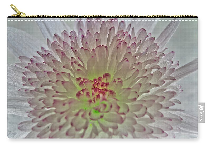 Chrysanthemum Carry-all Pouch featuring the photograph Chrysanthemum by Brian Roscorla