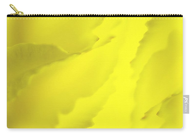 Blossom Carry-all Pouch featuring the photograph Chrysanthemum by Svetlana Sewell