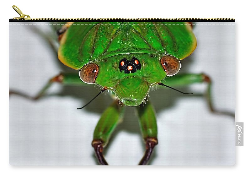 Photograph Carry-all Pouch featuring the photograph Cicada Eyes by Kaye Menner