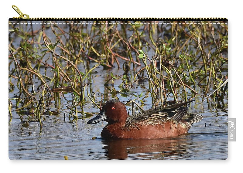 Teal Carry-all Pouch featuring the photograph Cinnamon Teal by Dwight Eddington