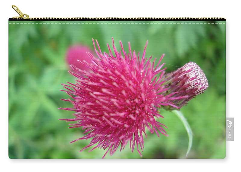 Thistle Carry-all Pouch featuring the photograph Cirsium Burgandy Thistle by Susan Baker