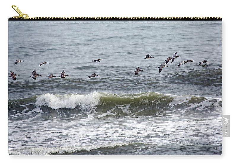 Pelicans Carry-all Pouch featuring the photograph Classic Brown Pelicans by Betsy Knapp
