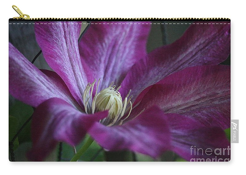 Flower Carry-all Pouch featuring the photograph Clematis Close-up by Susan Herber