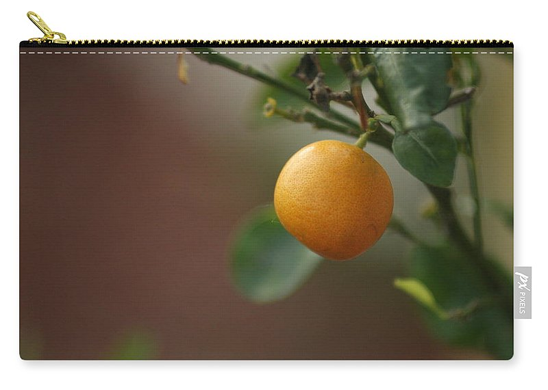 Orange Carry-all Pouch featuring the photograph Clementine by Emily Shand