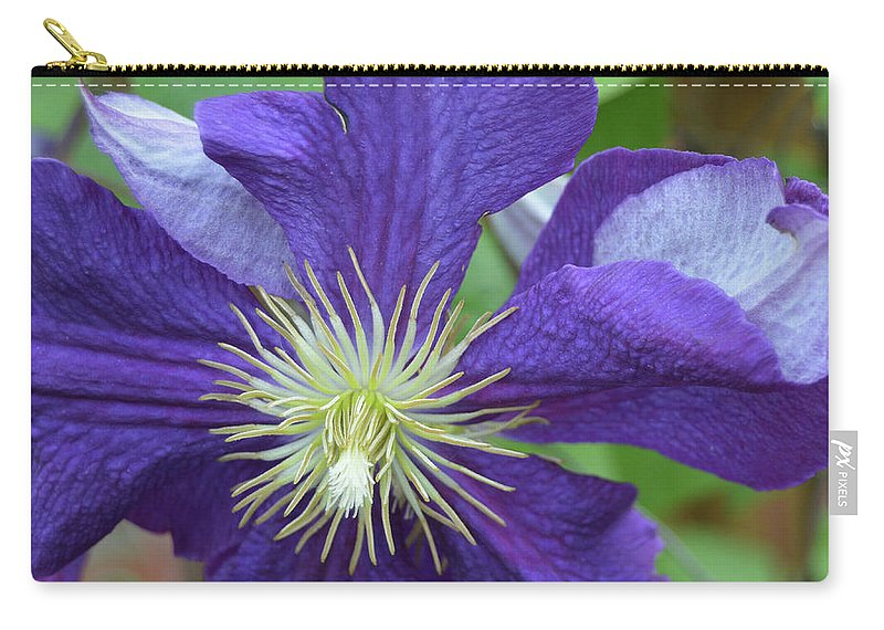Flower Carry-all Pouch featuring the photograph Close Clematis by Karen Sturgill
