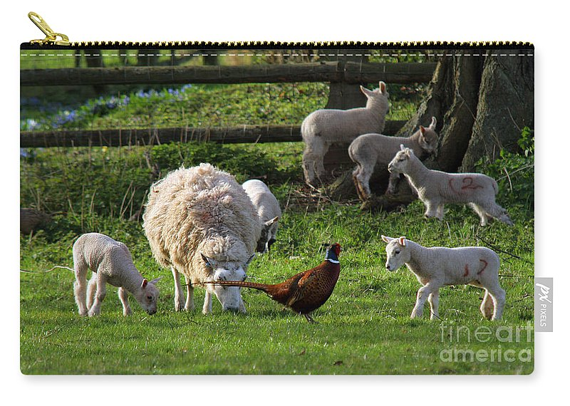 Pheasant Carry-all Pouch featuring the photograph Close Encounter Of The Third Kind by Angel Ciesniarska