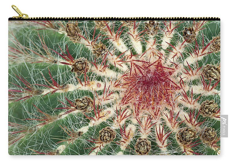 Cacti Carry-all Pouch featuring the photograph Close-up Of Cactus With Purple Spines by GoodMood Art