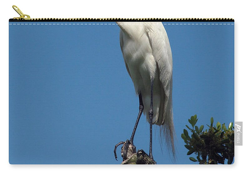 Nature Carry-all Pouch featuring the photograph Cloud Watcher by Peg Urban