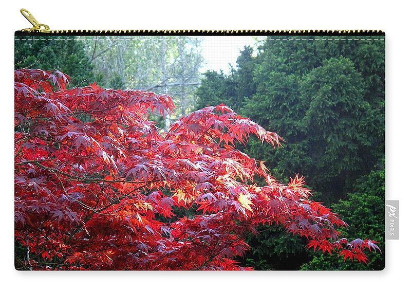 James Gardens Carry-all Pouch featuring the photograph Clouds Of Leaves by Ian MacDonald