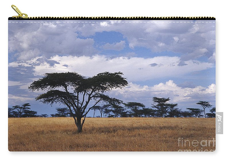 Africa Carry-all Pouch featuring the photograph Clouds Over The Masai Mara by Sandra Bronstein