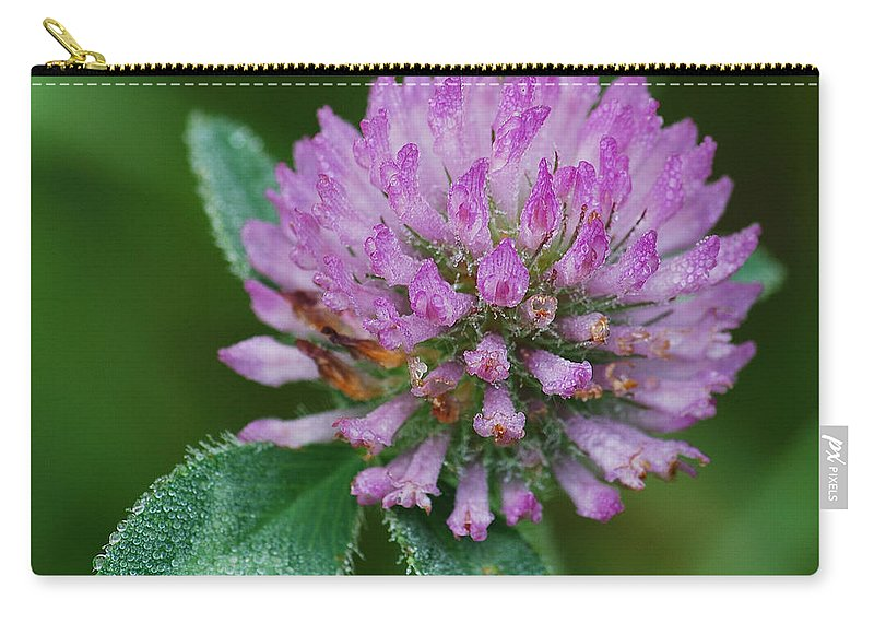 Flower Carry-all Pouch featuring the photograph Clover In Dew by Michael Peychich