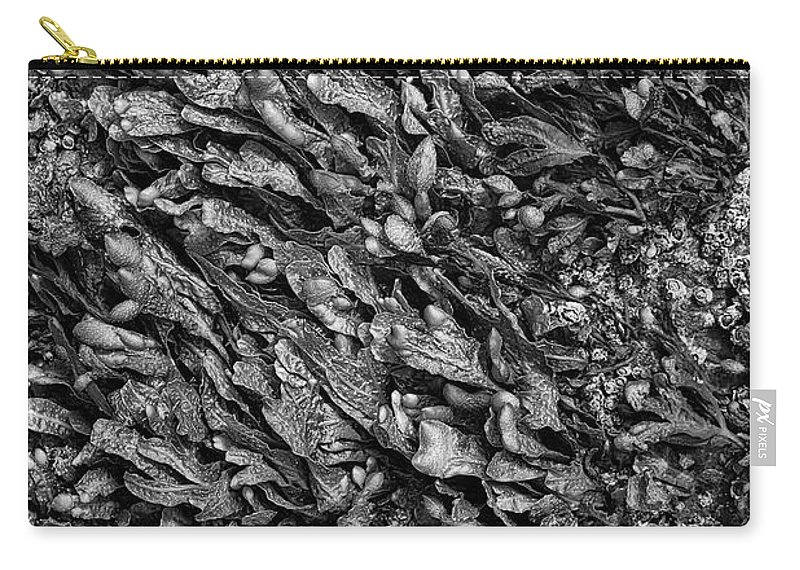 Seaweed Carry-all Pouch featuring the photograph Coast - Seaweed Shapes by Mary Bassett