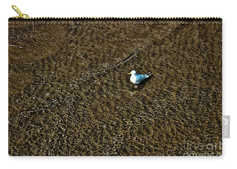 Gull Carry-all Pouch featuring the photograph Coast - The Glowing Gull by Mary Bassett