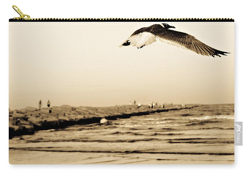 Bird Carry-all Pouch featuring the photograph Coastal Bird In Flight by Marilyn Hunt